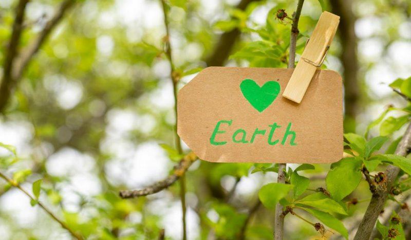 nachhaltigkeit fuer anfaenger