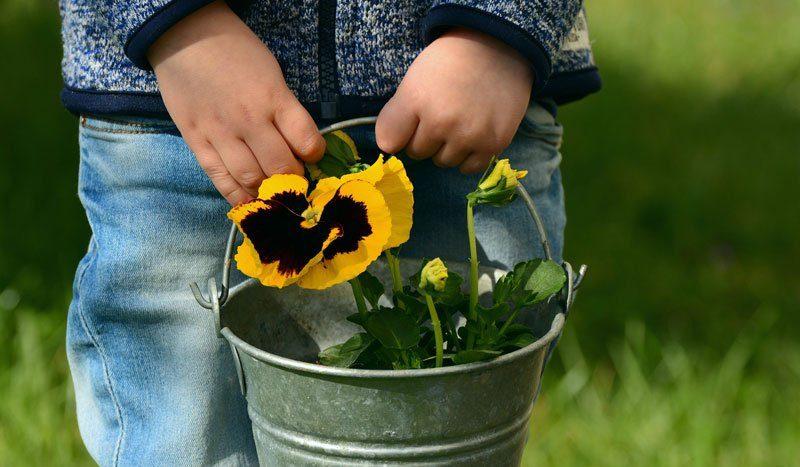 nachhaltigkeit im kindergarten