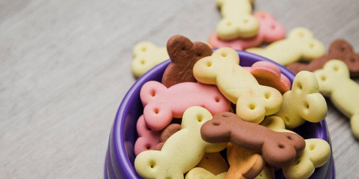 nachhaltig mit hund mit leckerli