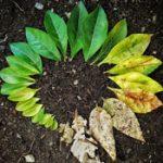 Lebensdauer von Kunststoffen: Haltbarkeit & Degradation