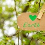 Nachhaltigkeit für Anfänger – 11 praktische Tipps!