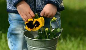 nachhaltigkeit-im-kindergarten-kl